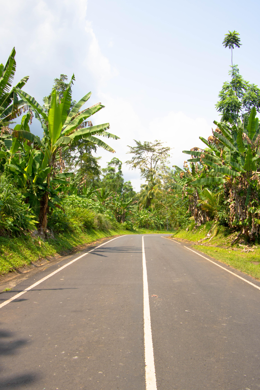 Selfdrive Africa São Tomé