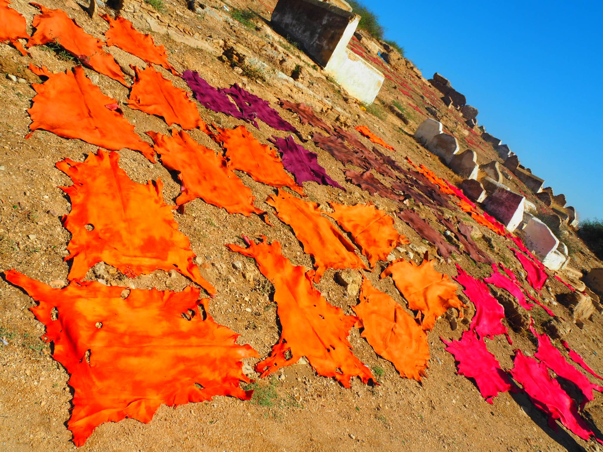 famous tanneries