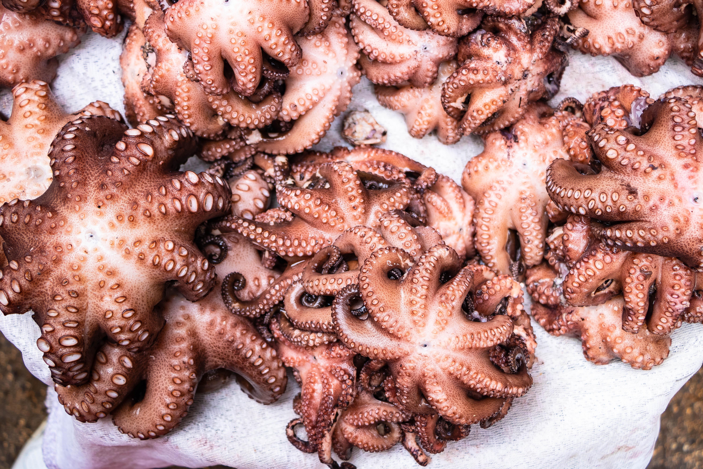 Sao Tome Where to eat - seafood
