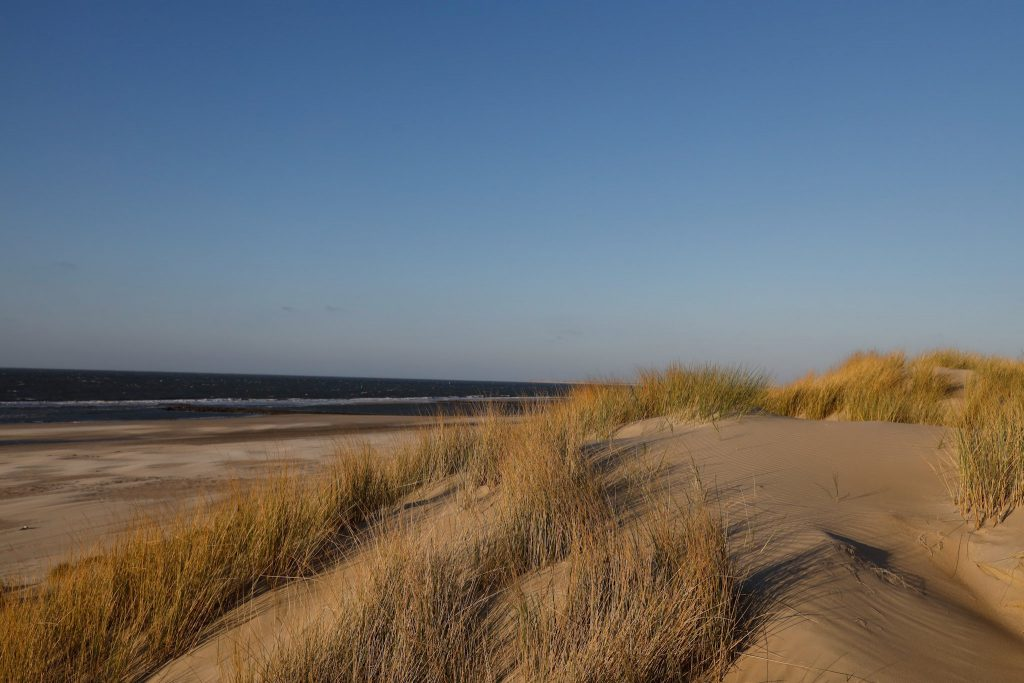 Vlieland- The Netherlands - TravelRebel- Sustainable Travel in Europe