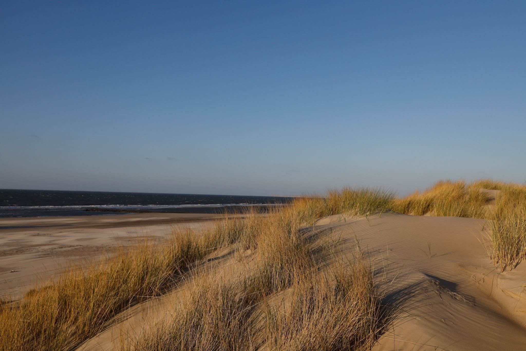 Vlieland- The Netherlands - TravelRebel- Sustainable Travel in Europe