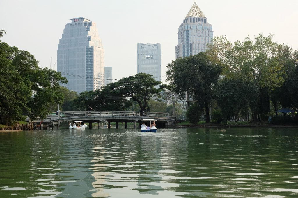 Paddle boats at Lumphini Park - Bangkok
