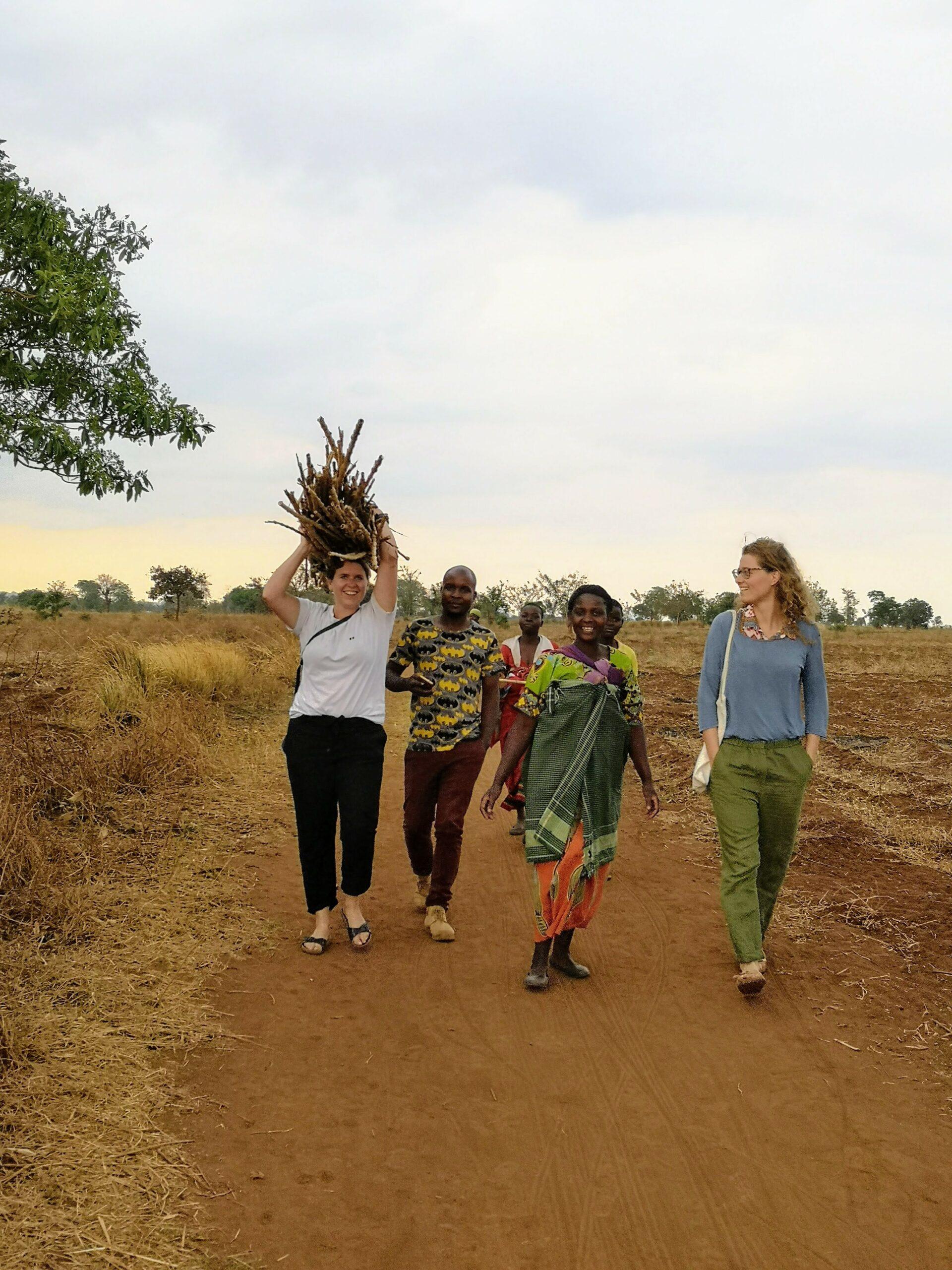 Travel like a local in Senegal