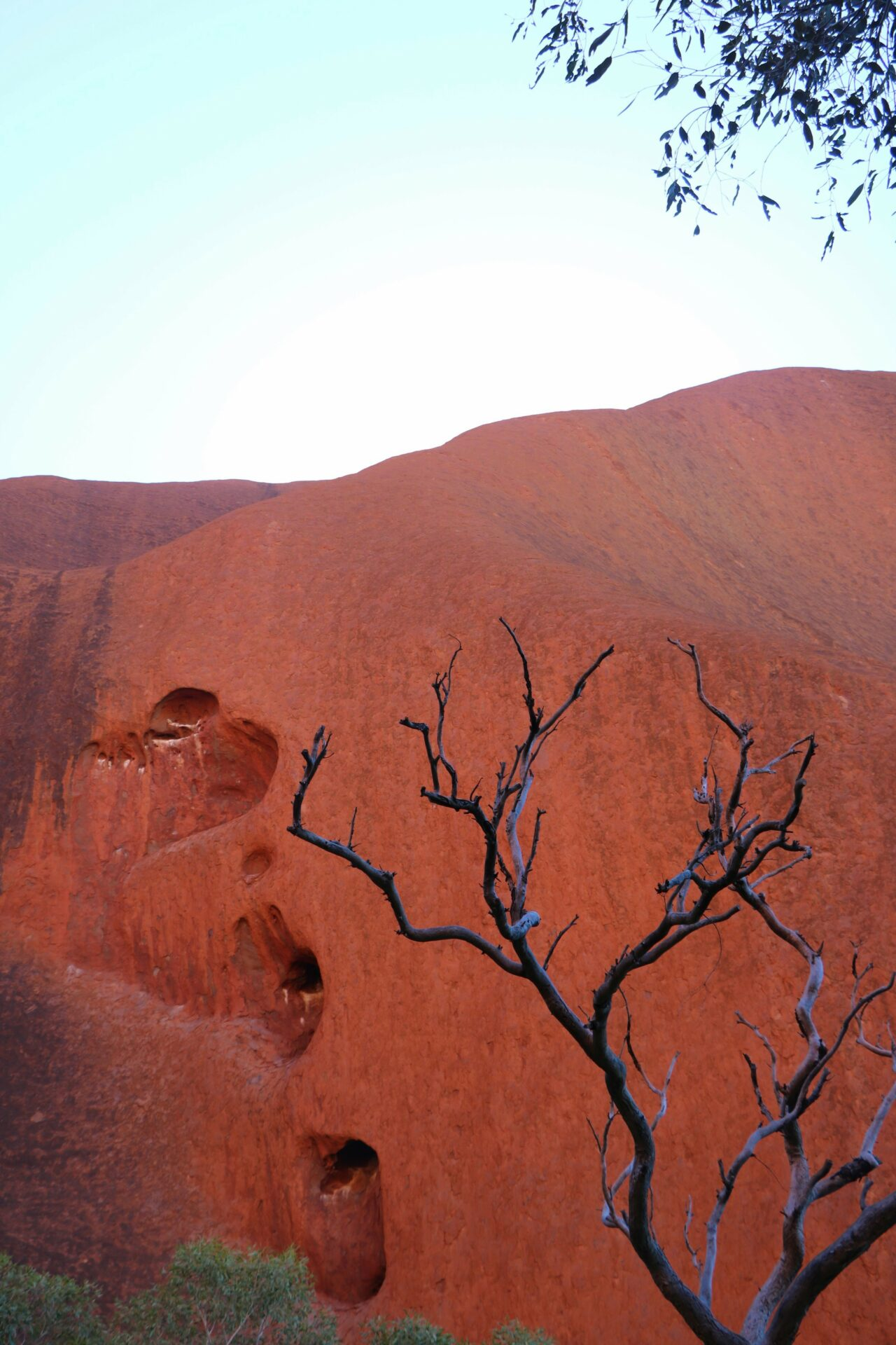 Overtoerisme in Australië. Massatoerisme Uluru of Ayers Rock, Outback, Australië