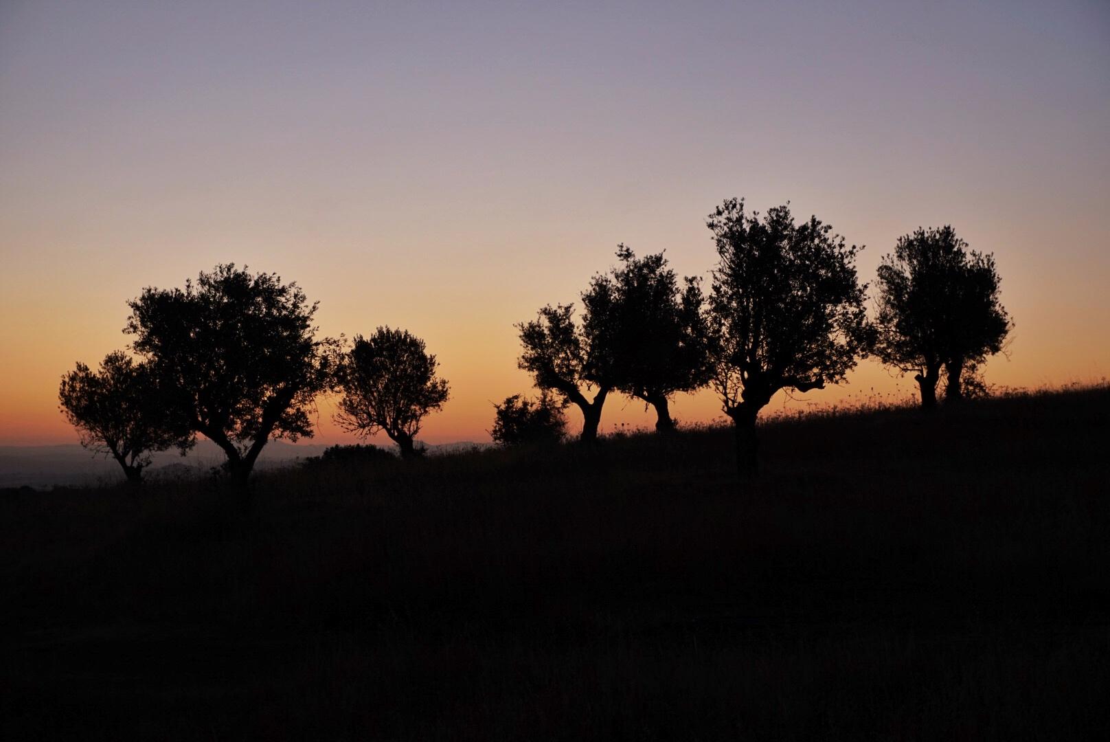 Zonsondergang in Alentejo - Portugal - Onbekende regio - Duurzaam reizen -