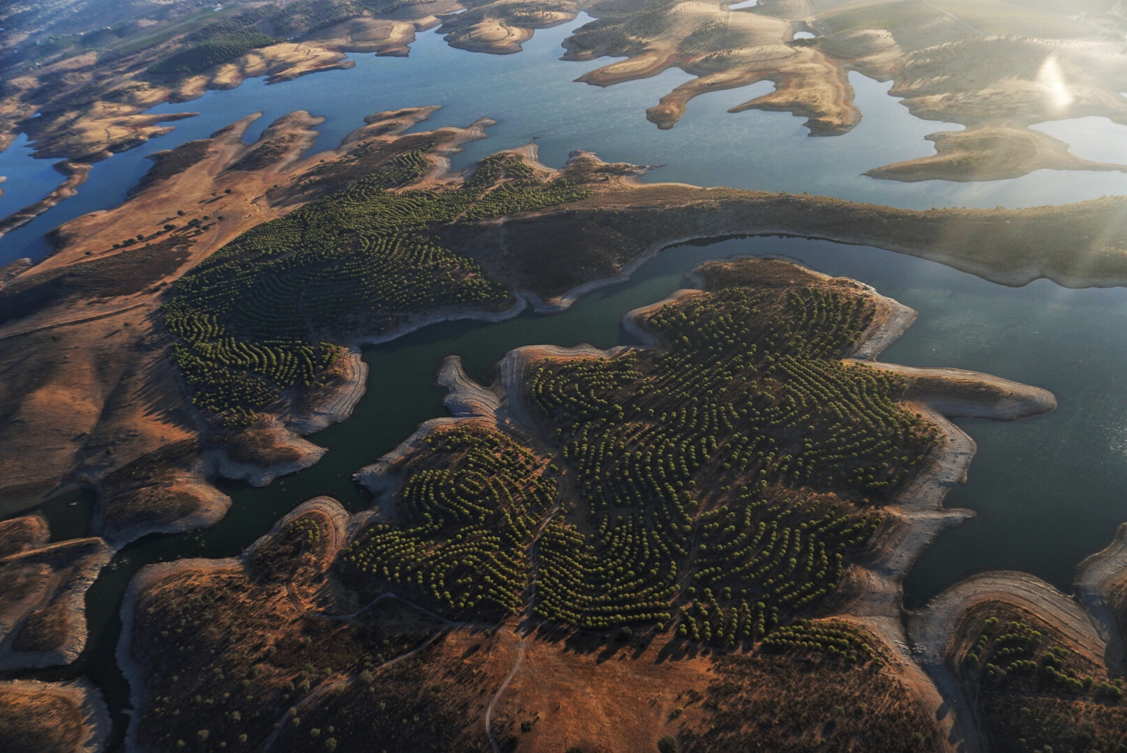Early morning hot air balloon flight over Alentejo, Portugal