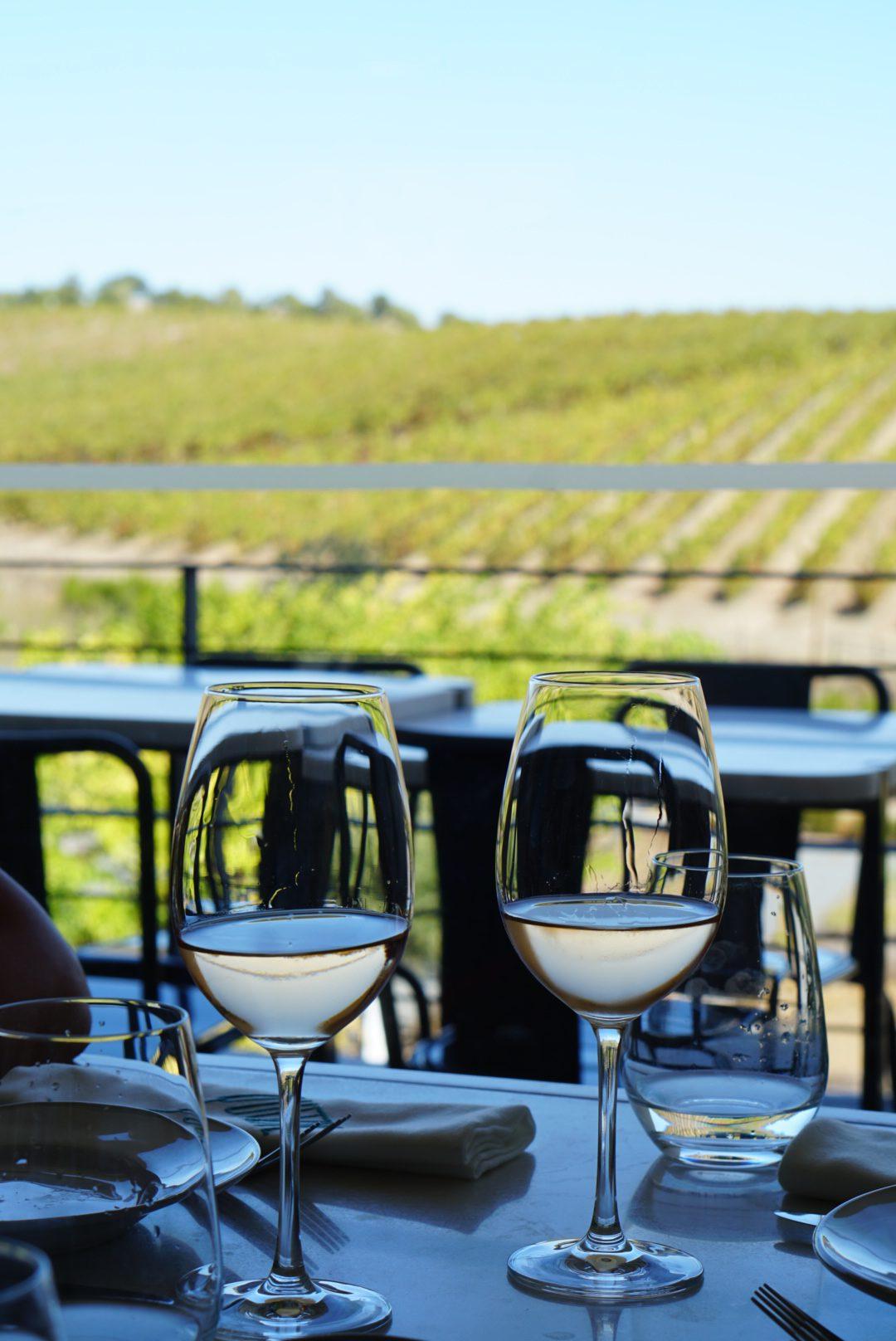 Wijnproeven in Portugal Alentejo - duurzaam reizen - lokale wijnen