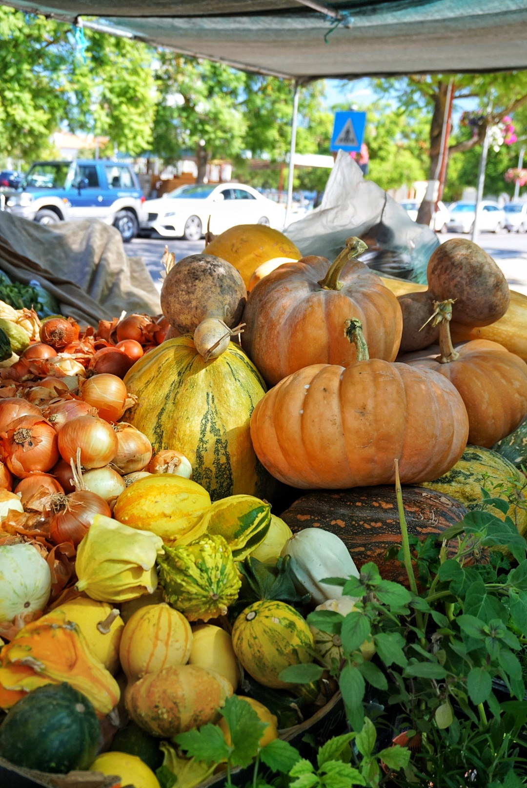 Estremoz in Alentejo - Local market with fresh vegetables, fruit, meat,..and second hand market