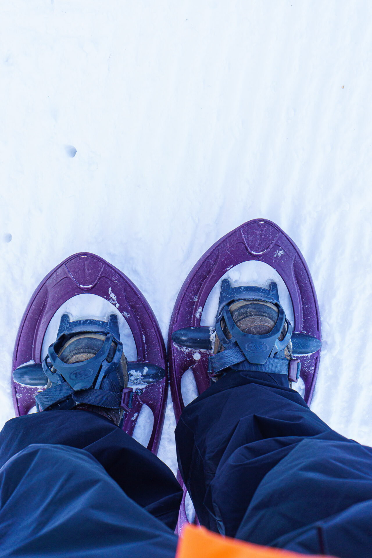 Snowshoe hiking in Les Arcs, cool things to do in France