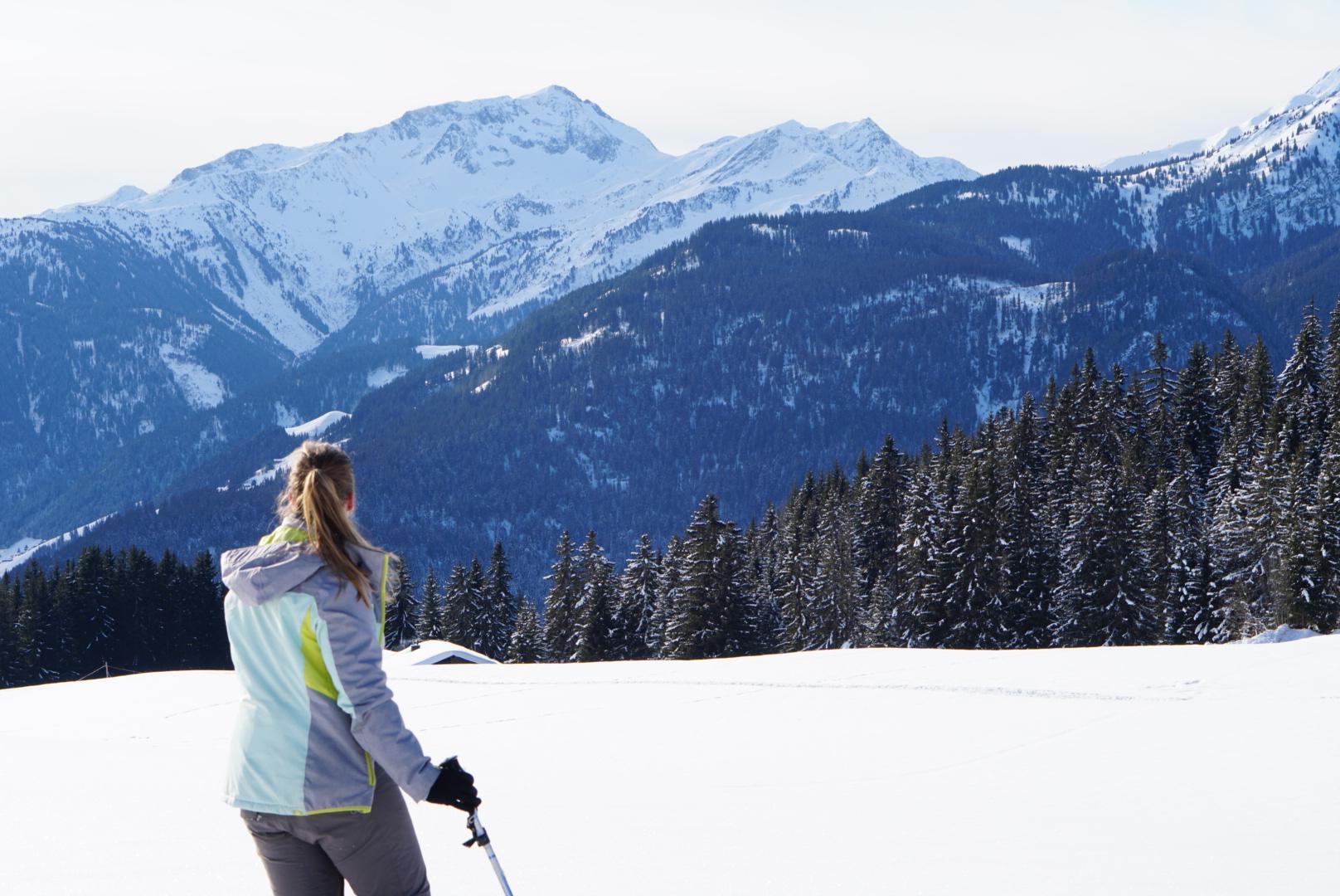 Slow Travelling, snowshoe hiking in France, region Savoie Mont Blanc, Massif des Bauges