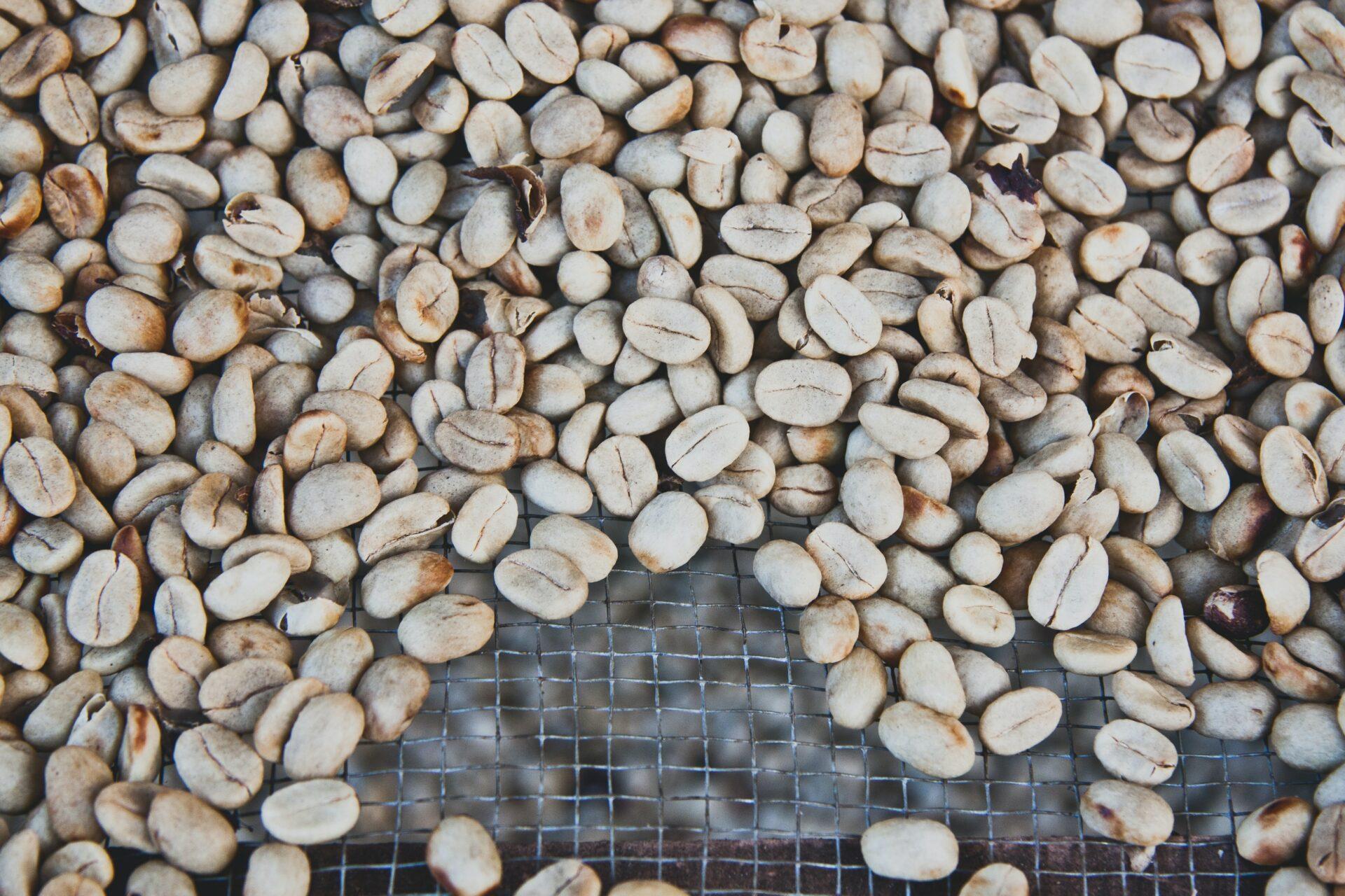 Koffie, chocolade, bier en rum tasting in Costa Rica