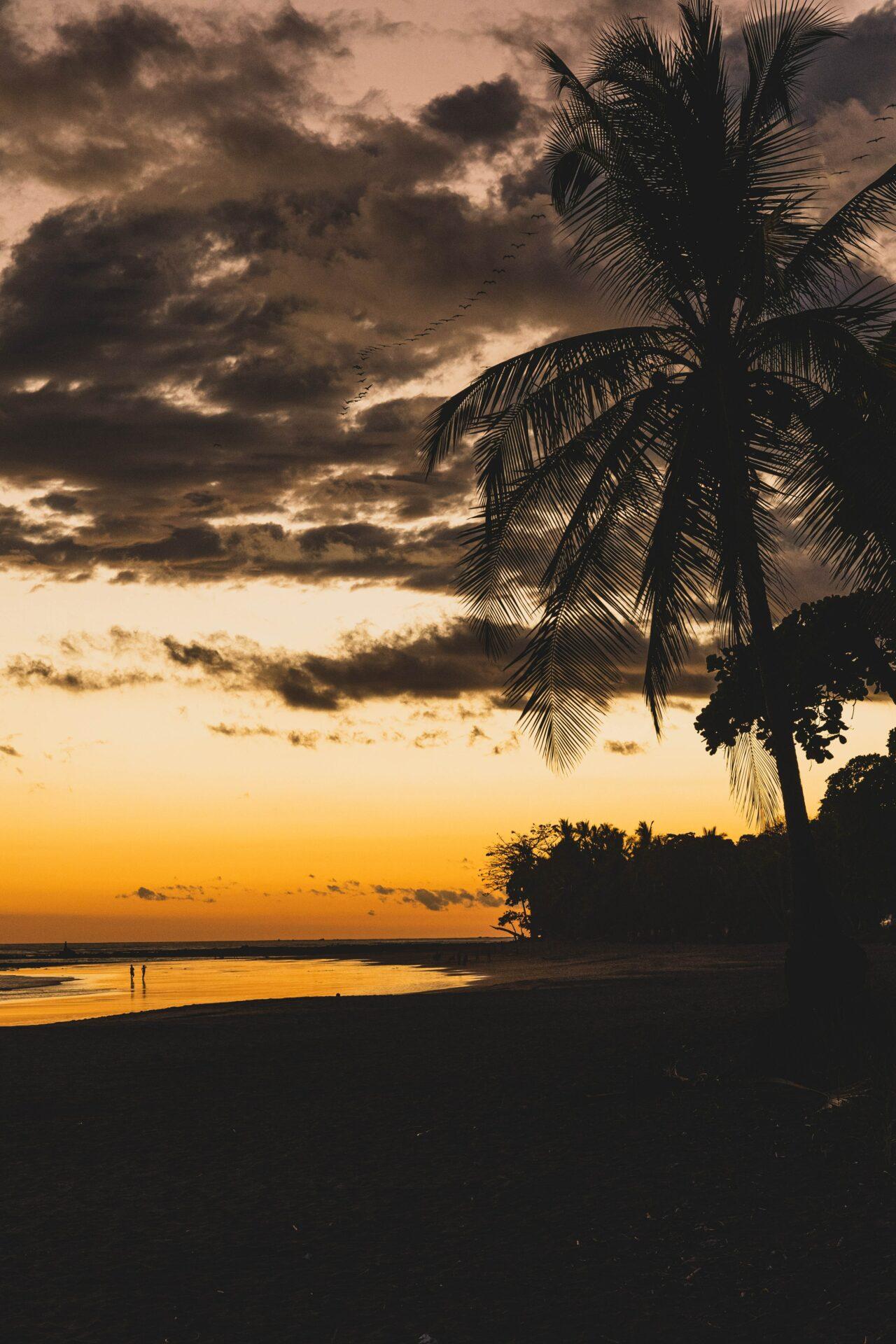 Duurzaam reizen in Costa Rica - Prachtige zonsondergang, verantwoord whale watching en toch de mogelijkheid om in de jungle te zitten, je vindt het allemaal aan de Pacific.