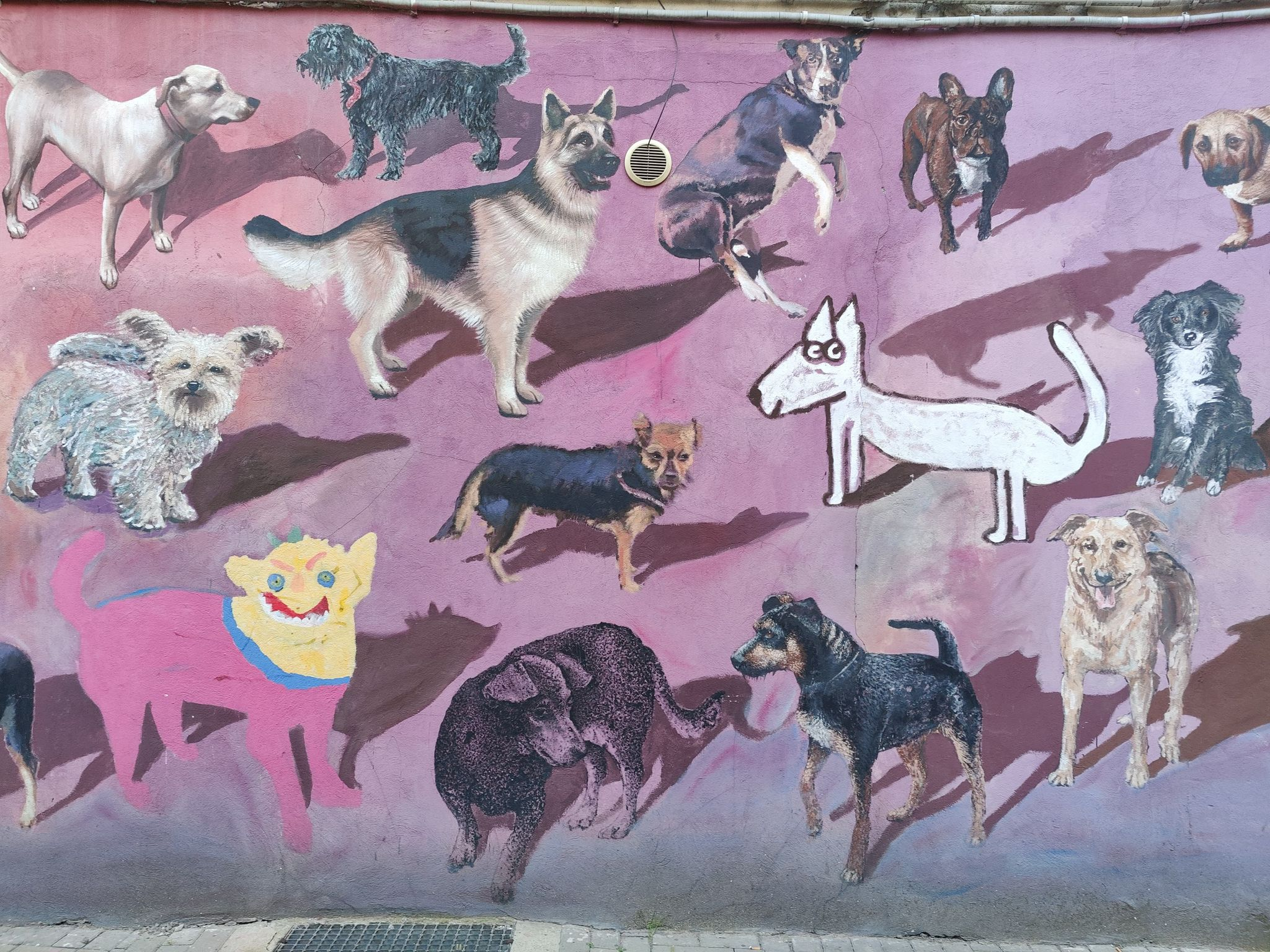 Street art in Wroclaw - Polen